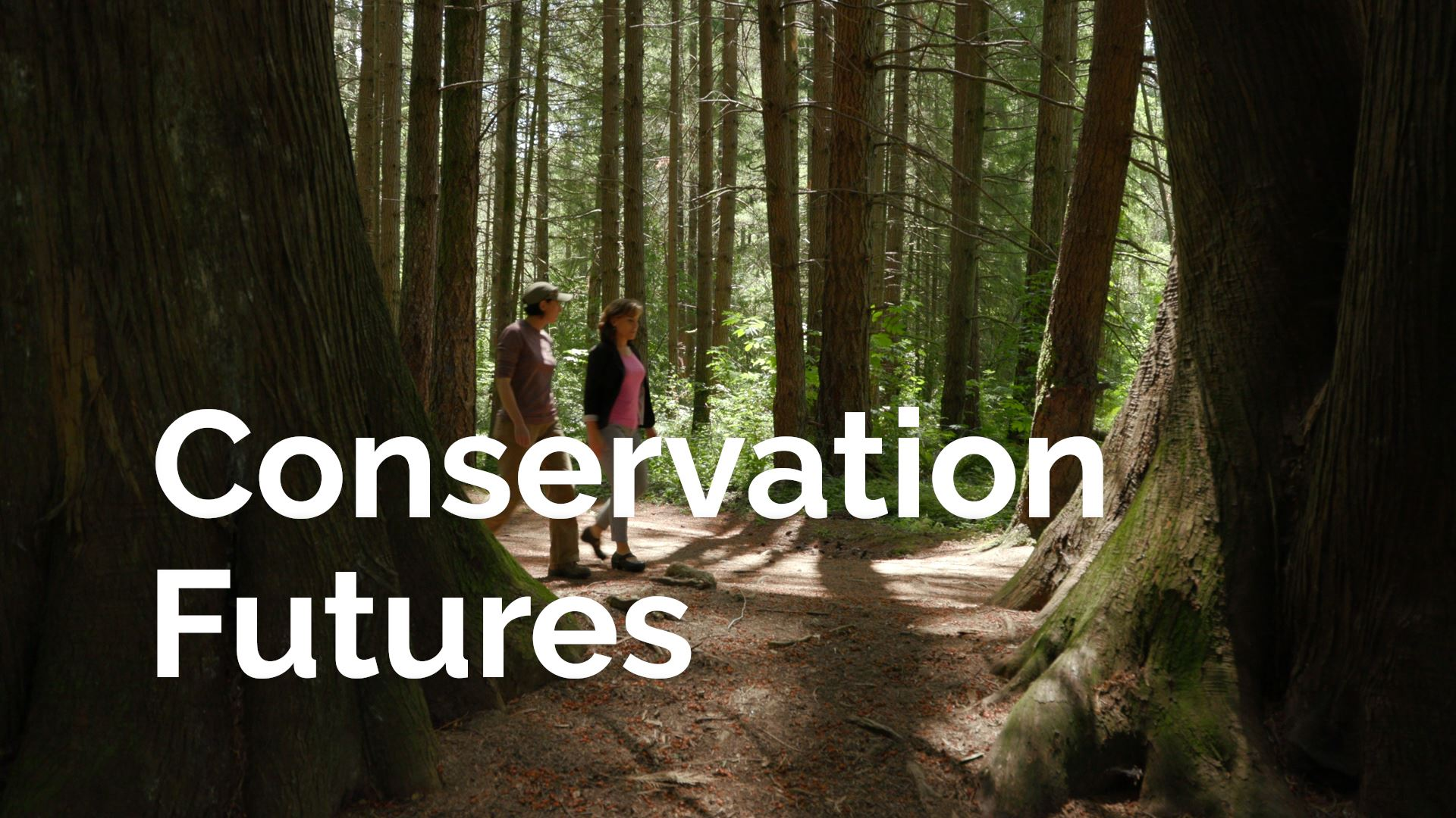 Conservation Futures